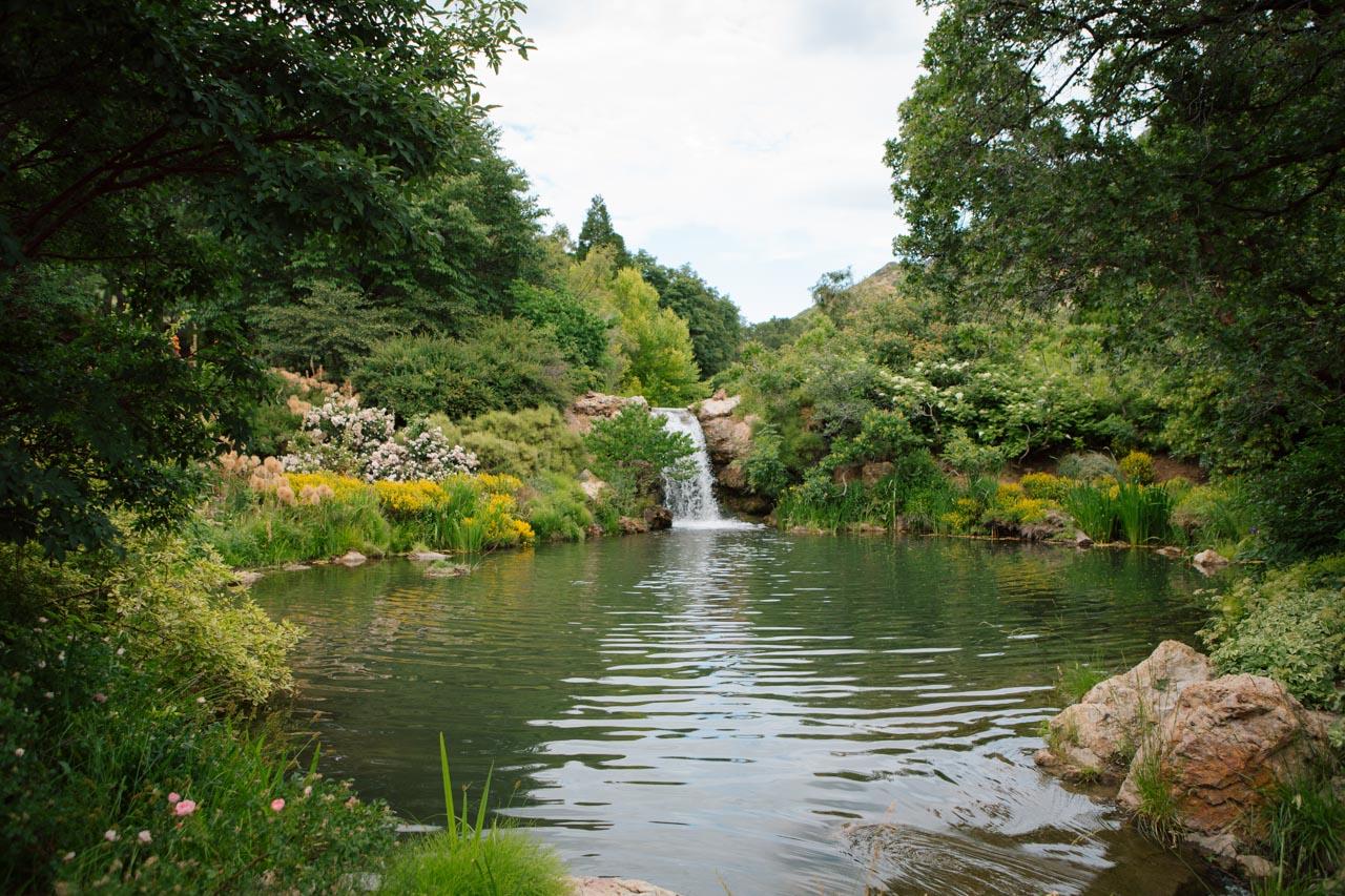 Waterfall near the Rose Garden.