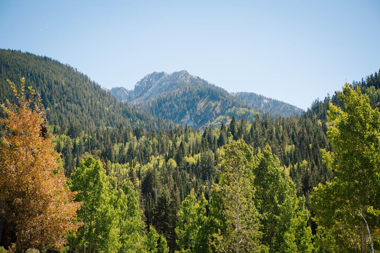 Mountain views at Silver Fork Lodge.